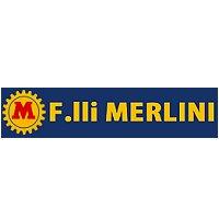 Merlini (κοπροδιανομεις)